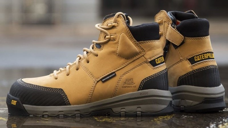 Cat Boots Image
