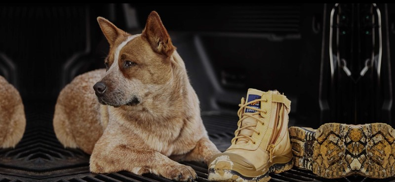 Mongrel Boots Image